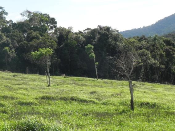 (k.a) Troco Terrenos Por Carros