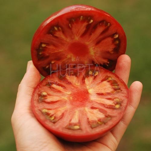 Semillas Tomate Brandywine! Exquisito Tomate Reliquia