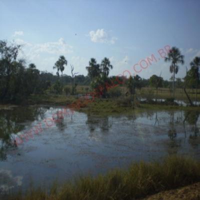 Venda - Fazenda - Zona Rural - Paranatinga - Mt - D8160