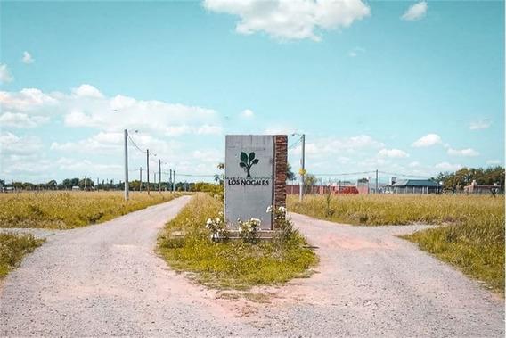 Venta Terreno Los Nogales - Camino A Colon - 541m2
