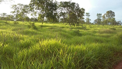 Fazenda Com 2000 Ha Em Curvelo Mg - 09 Klm De Terra- Toda Cercada Arame Liso -03 Currais - Casa Boa Boa De Água. - 2901