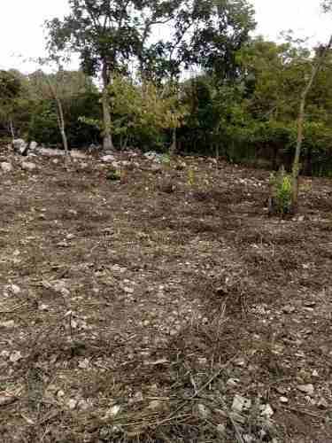 Terreno En Venta A 10-15 Minutos De Tuxtla, Carr. Chicoasén