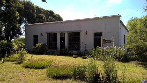 Quinta | Calle 515
