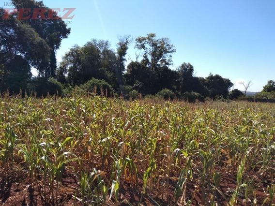 Chácaras_sítios_fazendas Para Venda - 13650.7011