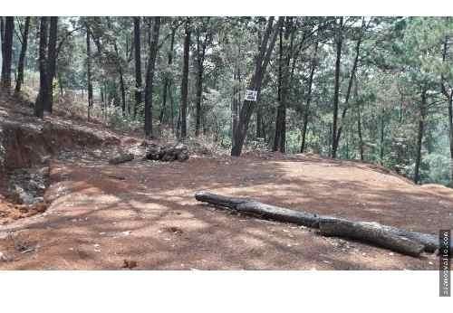 Terreno Con Proyecto Para Casa De Descanso