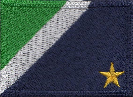 Patch P/ Camiseta Blusa Bandeira Mato Grosso Do Sul Pequena