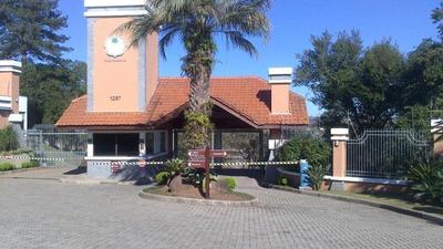 Terreno Residencial À Venda, Feitoria, São Leopoldo - . - Te0025