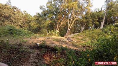 Terreno En Urb La Morita Ruta 6 San Antonio De Los Altos Cfx