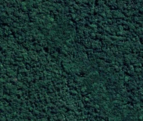 Área Para Compensação Ambiental - Itanhaém - Sp