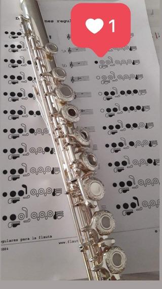 Flauta Traversa Lincoln Winds Deluxe Plata. Llaves Abiertas.