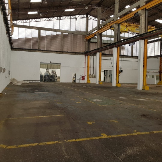 Galpao Industrial - Sertaozinho - Ref: 6100 - L-6100
