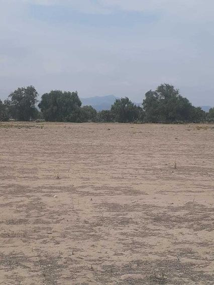 Terreno En Venta De 42900 M2 En Pachuquilla