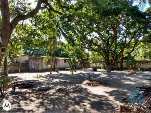 Imagem 1 de 8 de Terreno Na Vila De Ponta Negra - V-11436