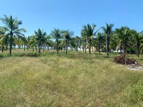 Terreno En Playa Coyuca De Benítez Lote #20 Manzana 63