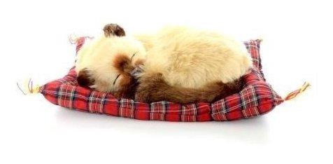 Animal Para Decoração Minipetzzz Pelúcia Gato Siamese 10cm