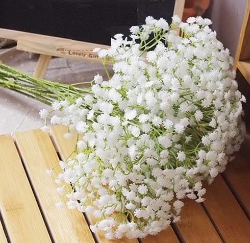 Flor De Verano Gypsophila Color Blanco, Distribuidor
