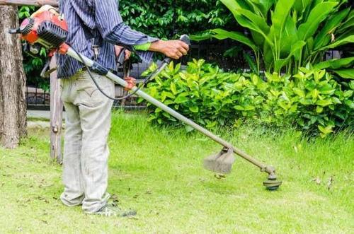 Imagem 1 de 1 de Limpeza De Terrenos E Quintais