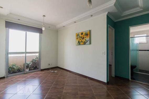 Apartamento No 14º Andar Com 2 Dormitórios E 1 Garagem - Id: 892956566 - 256566