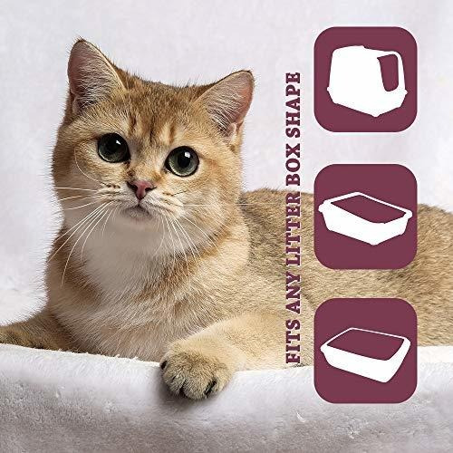 Arena Para Gato Alfapet Kitty - Caja De Arena Para Gatos Des