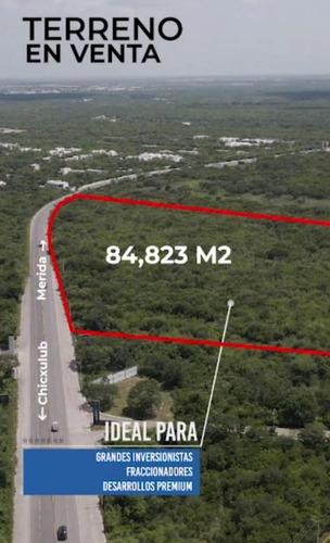 Imagen 1 de 1 de Terreno En Venta Carretera Chicxulub Puerto