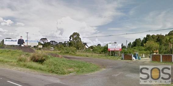 Área Para Locação Em Curitiba, Cidade Industrial - 518 Area 66-a Br-277
