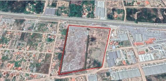 Terreno Para Alugar, 49000 M² Por R$ 25.000,00/mês - Taborda - São José De Mipibu/rn - Te2276