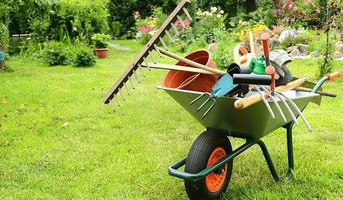 Imagem 1 de 1 de Serviços De Paisagismo, Jardinagem E Manutenção De Jardins