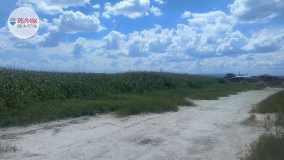 Rancho Agricola De 68 Hectareas A 20 Min. De La Cd.