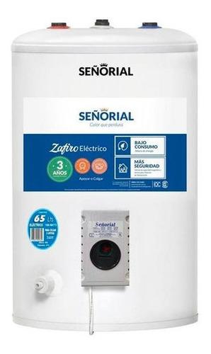 Imagen 1 de 2 de Termotanque Señorial Zafiro Electrico 65 Litros