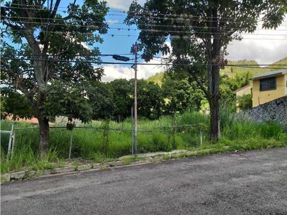 Terreno En Palmarito Cerca Del Castaño En Maracay