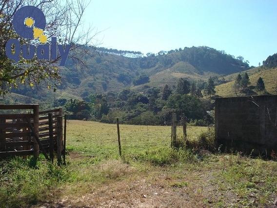 Rural Para Venda, 0 Dormitórios, Monte Alegre - Monte Alegre Do Sul - 888