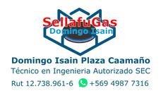 Fuga De Gas Gasfiter Certificado Sec Sellafugas Prodoral R61