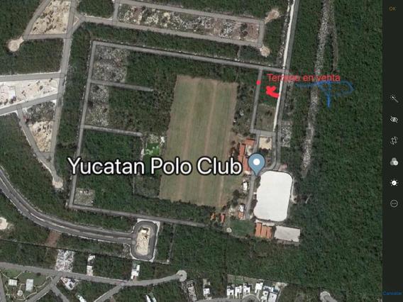 Terreno En Club De Polo Yucatan