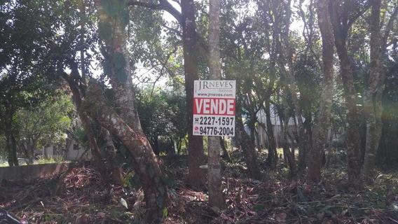 239 - Terreno No Jardim Nicolai