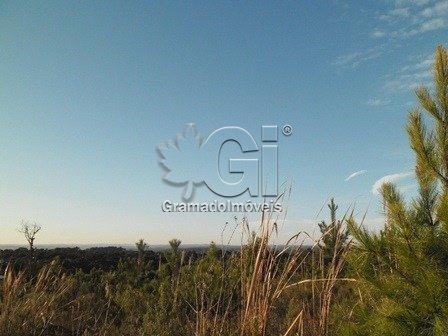 Terreno - Mato Queimado - Ref: 3869 - V-gi3875