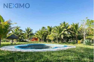 Venta De Terreno-finca En Puerto Morelos, Quintana Roo