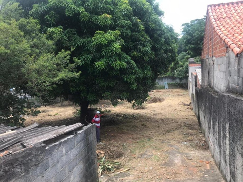 Terreno Vila Clarice - Te0336