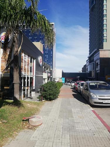Alquiler Local Comercial En Punta Carretas