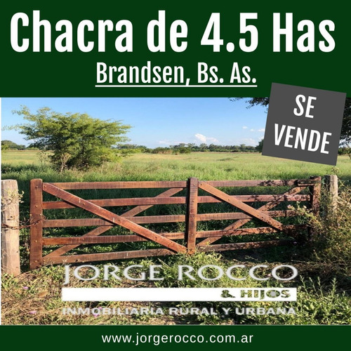 Chacra De 4 Has En Brandsen