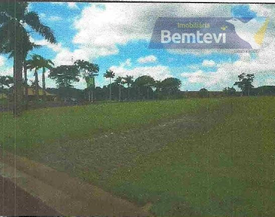 Terreno Residencial À Venda, Alphaville Maringá, Iguaraçu. - Te0181
