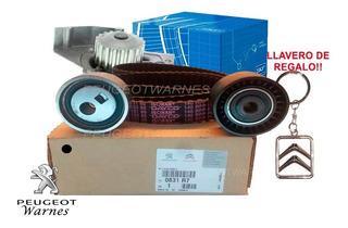 Kit De Distribucion Y Bomba Skf Citroen Berlingo 1.9 Dw8
