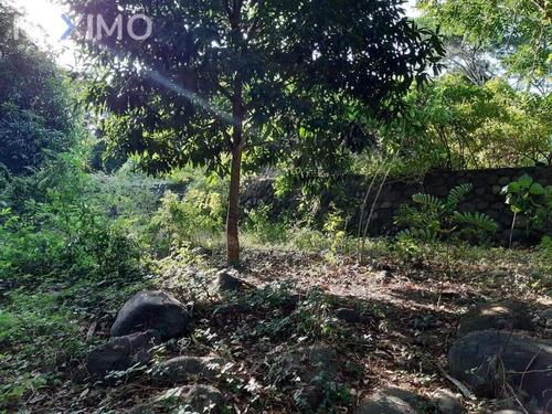 Imagen 1 de 6 de Venta De Terreno En Jalcomulco, Ver. A Orilla De Rio