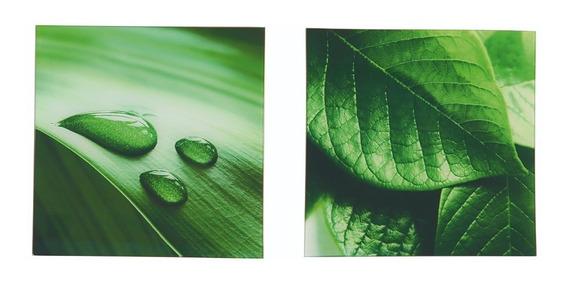 Conjunto De 2 Quadros De Vidro Paisagem Folhas Orvalho
