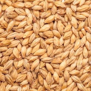 Malte Agraria Pilsen - Saca 25kg