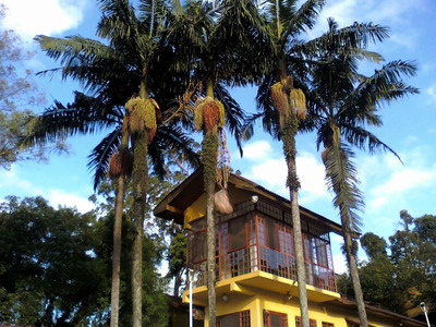 Casa Comercial Para Locação, Eldorado, Diadema - Ca7306. - Ca7306