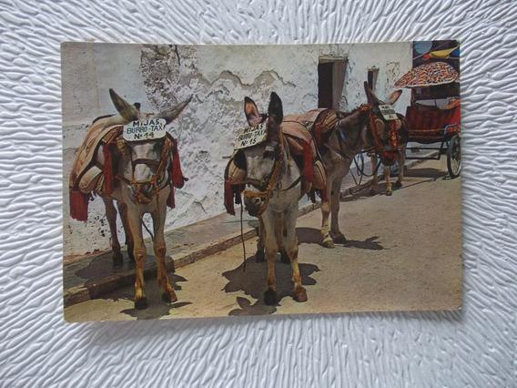 5148- Postal Parada De Burros Taxi Ed . En España