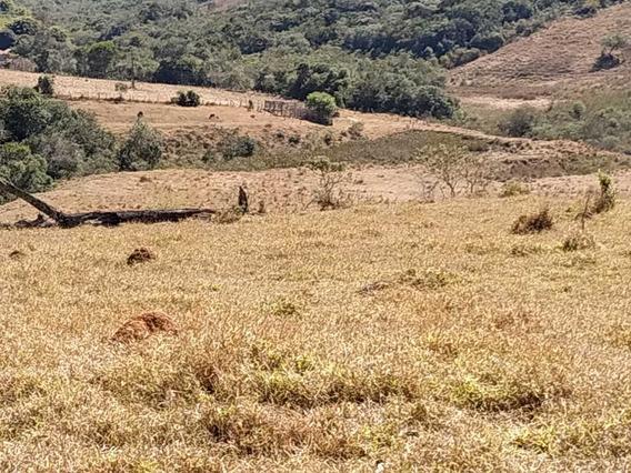 Sítio No Sul De Minas , Cidade De Cruzília , Solo Bom , Bom De Água , 100 % Mecanizável , Com 24,5 Hectares. - 839