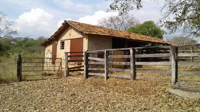 Fazenda Em Curvelo Mg, Com 500 Ha, Pasto Formado , Apenas 8 Klm De Terra, Casa, Curral . - 4382