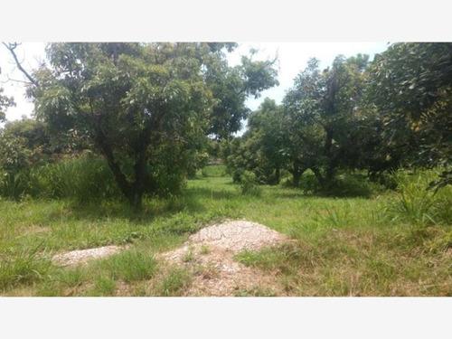 Imagen 1 de 12 de Terreno En Venta Ixtlahuacan