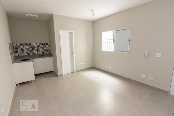 Apartamento Para Aluguel - Barra Funda, 1 Quarto, 40 - 893022348